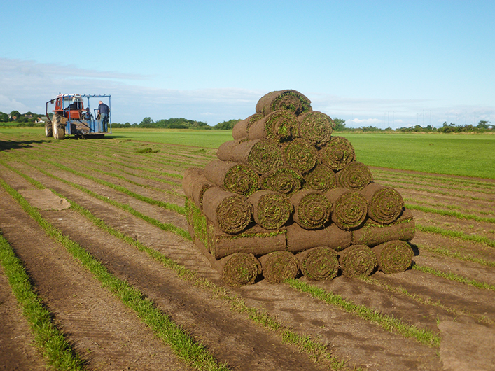 Cumbria Turf being lifted and stacked in rolls